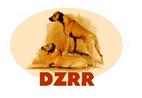 dzrr1